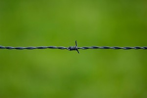 barbed-wire-250822_640(1)